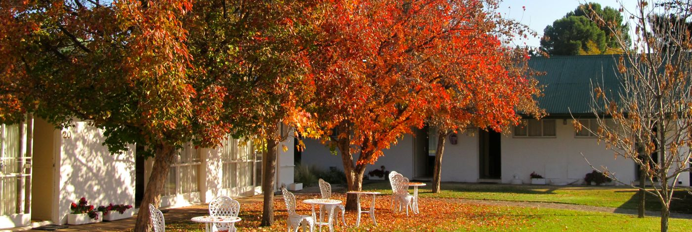 Aliwal North Accommodation | Umtali Country Inn in Autumn